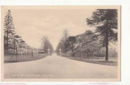 Angleterre -  Solhull High School For Girls - The Avenue - Achat Immédiate - Angleterre