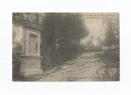MONTAIGU  Chemin Du Rosaire Et Calvaire - Rozenkransweg. - Scherpenheuvel-Zichem