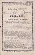Slijpe, Slype, Nieuport,Nieuwpoort, 1891, Cecilia Debruyne, Witvoet - Religion & Esotérisme