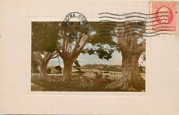 Pays Div : Ref M361- Cuba   - Carte Bon Etat - - Cuba