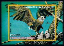 Equatorial Guinea 1976 Birds In North America Imperf. Sheet Mi.B251 MNH LOT.006 - Equatorial Guinea