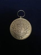 Ath - Médaille Du Cortège 1988 - Belgique