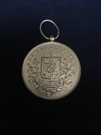 Ath - Médaille Du Cortège 1972 - La Ville D'Ath - Belgique
