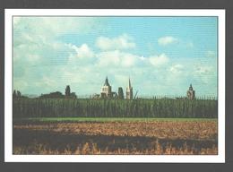 Poperinge - De 3 Kerken Met Hoppeveld - Hop / Houblon - Nieuwstaat - Poperinge