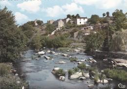 85-----ROCHARD--la Vallée De La Sèvre-nantaise--voir 2 Scans - France