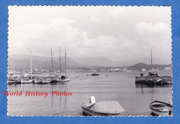 Photo Ancienne Snapshot - AJACCIO ( Corse ) - Le Port - Juin 1967 - Canots - Boats