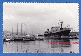 Photo Ancienne Snapshot - AJACCIO ( Corse ) - Le Port - Juin 1967 - Canots Et Bateau à Identifier - Boat Ship - Boats
