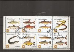 Poissons ( Série Complète De 8 Timbres Privés Oblitérés De Bernera Island) - Fishes