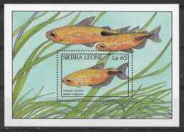 1988 SIERRA LEONE  BF 76** Poissons - Sierra Leone (1961-...)
