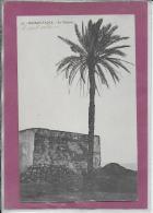 MAROC .- KASBAH - TADLA Le Palmier - Maroc