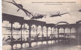 87-Le DORAT- Ecole Primaire Supérieure De Jeunes Filles Du DORAT-Le Cabinet D'Histoire Naturelle-Edit. SURENAUD - Le Dorat
