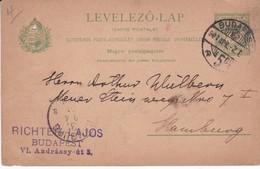 ENTERO ENTIER LEVELEZO LAP CIRCULEE BUDAPEST TO HAMBURG CIRCA 1901 - BLEUP - Postal Stationery