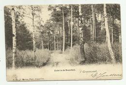 's Gravenwezel   *  Zicht In De Bosschen  (Hoelen,324) - Schilde