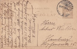 ENTERO ENTIER LEVELEZO LAP CIRCULEE BUDAPEST TO HAMBOURG CIRCA 1924 - BLEUP - Postal Stationery