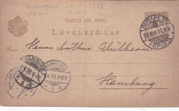 ENTERO ENTIER LEVELEZO LAP CIRCULEE BUDAPEST TO HAMBOURG CIRCA 1898 - BLEUP - Postal Stationery