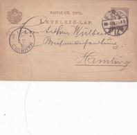 ENTERO ENTIER LEVELEZO LAP CIRCULEE BUDAPEST TO HAMBURG CIRCA 1899 - BLEUP - Postal Stationery