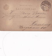 ENTERO ENTIER LEVELEZO LAP CIRCULEE BUDAPEST TO HAMBURG CIRCA 1892 - BLEUP - Postal Stationery
