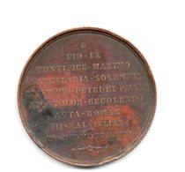 VATICANO     MEDAGLIA    1867       ROMAE      PIO IX     PONTEFICE     MASSIMO 1867 - Royal/Of Nobility