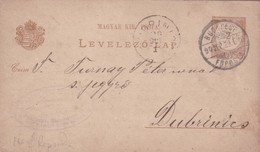 ENTERO ENTIER LEVELEZO LAP CIRCULEE BUDAPEST TO DUBRINICS CIRCA 1890 - BLEUP - Postal Stationery