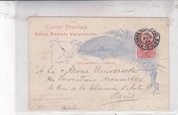 MOURA & CIA ENTERO ENTIER CIRCULEE SAO PAULO TO PARIS CIRCA 1894- BLEUP - Postal Stationery