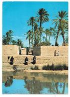 La Source Bleue à TIZNIT - Ed. JEFF N° 5113 - Maroc