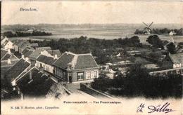 1 Oude  Postkaart   Broechem  Panoramazicht  Molen   Uitg. Hoelen N°526 - Ranst
