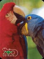 Zoo Ostrava (CZ) - Macaws - Animaux & Faune