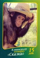 Zoo Skazka Yalta (UA / RU - Crimea) - Chimpanzee - Animals & Fauna