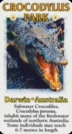 Crocodylus Park Darwin (AU) - Crocodile - Animaux & Faune