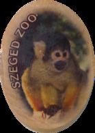 ZOO Szeged (HU) - Squirrel Monkey - Animals & Fauna