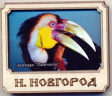 ZOO Limpopo Nizhniy Novgorod (RU) - Hornbill - Animals & Fauna