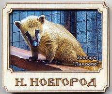 ZOO Limpopo Nizhniy Novgorod (RU) - Coati - Animaux & Faune