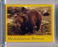 Medvedarium (Bear Enclosure) Beroun (CZ) - Bear - Animals & Fauna