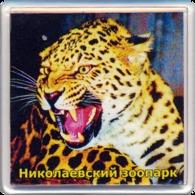 ZOO Nikolaev (UA) - Leopard - Animaux & Faune