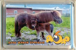 "Park Of Living Nature ""Dodo"" Anapa (RU) - Pony - Animaux & Faune"