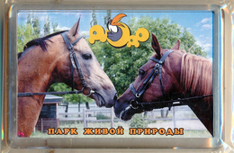 "Park Of Living Nature ""Dodo"" Anapa (RU) - Horse - Animaux & Faune"