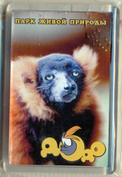 "Park Of Living Nature ""Dodo"" Anapa (RU) - Ruffed Lemur - Animaux & Faune"