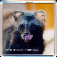 "Park Of Living Nature ""Dodo"" Anapa (RU) - Raccoon Dog - Animaux & Faune"