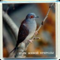 "Park Of Living Nature ""Dodo"" Anapa (RU) - Pigeon - Animals & Fauna"