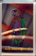"Park Of Living Nature ""Dodo"" Anapa (RU) - Parrot - Animals & Fauna"