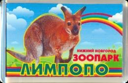 ZOO Limpopo Nizhniy Novgorod (RU) - Wallaby - Animaux & Faune