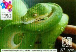 ZOO Perm (RU) - Tree Python - 3D Magnet - Animaux & Faune