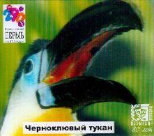 ZOO Perm (RU) - Toucan - 3D Magnet - Animals & Fauna