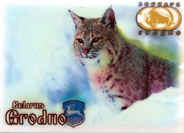 ZOO Grodno (BY) - Lynx - Animaux & Faune