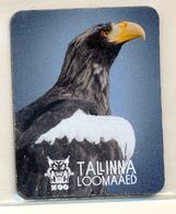 ZOO Tallinn (EE) - Eagle - Animaux & Faune