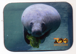 ZOO Wroclaw (PL) - Manatee - Animaux & Faune