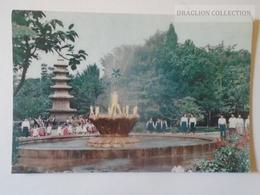 D160815  North KOREA - Old Postcard  Ca 1950-60's - Korea, North