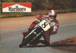F. SPENCER APRILIA  -1981 MOTO CLUB  BENELLI, BERARDI, SANTERNO INVITANO A ... (177) - Personalità Sportive