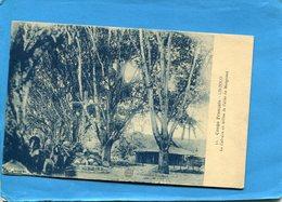 CONGO-LINZOLO-allée Des Manguiers -le Calvaire -édition Imp Nancy - Congo Francese - Altri