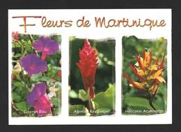 Fleurs De Martinique Multivues Carte Postale - Martinique